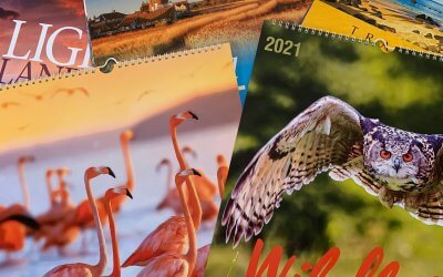 Sustainable Calendars Are The Way Forward…